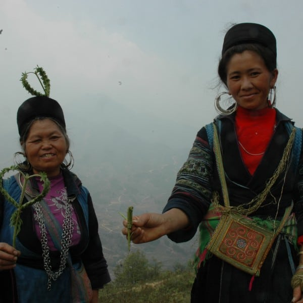Guides to the Villages near Sapa